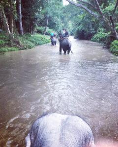 Beim Elefantenreiten: Ausblick auf Chiang Mai: Eileen S. und Karin H.